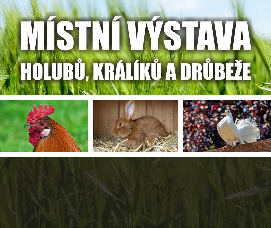 Místní výstava králíků, holubů a drůbeže – Uherský Brod